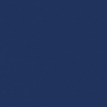 BLUE BG.png
