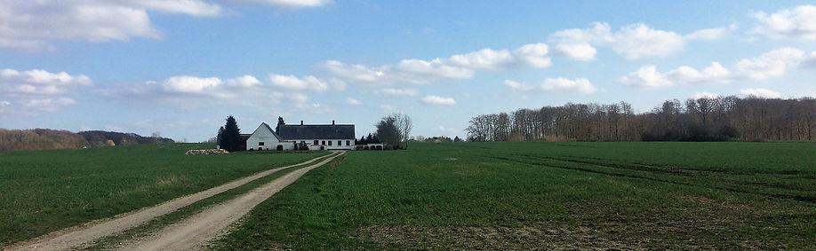 Den gård, der bliver centrum for det fælles fælles, i Bærebo Årslev projektet