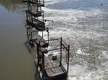 digue avec pêcheries d'anguille sur la Charente à Saint-Simeux