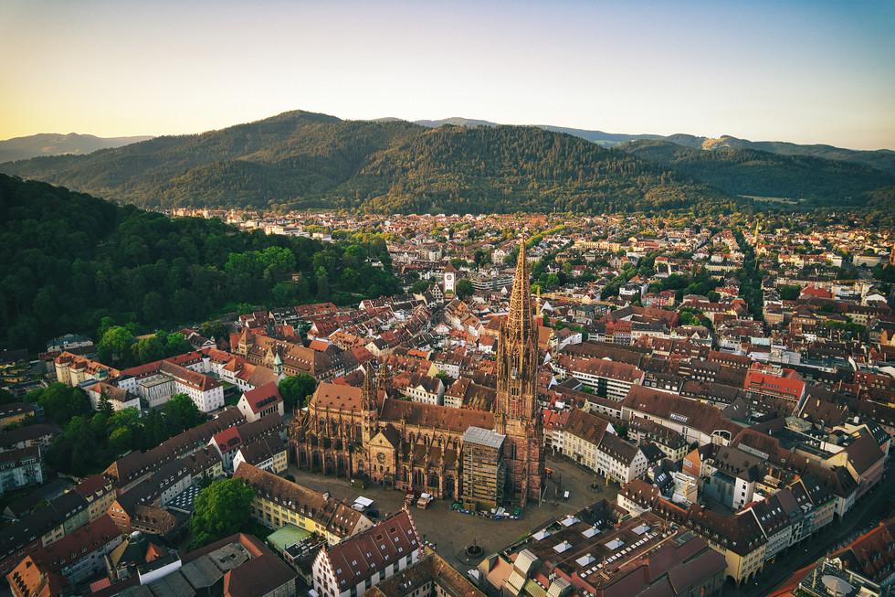 Münster Freiburg