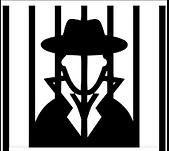 Agent November: Virtual X-Caper