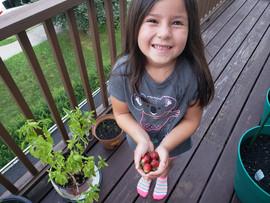 Green Deditos: Gardening Babysteps
