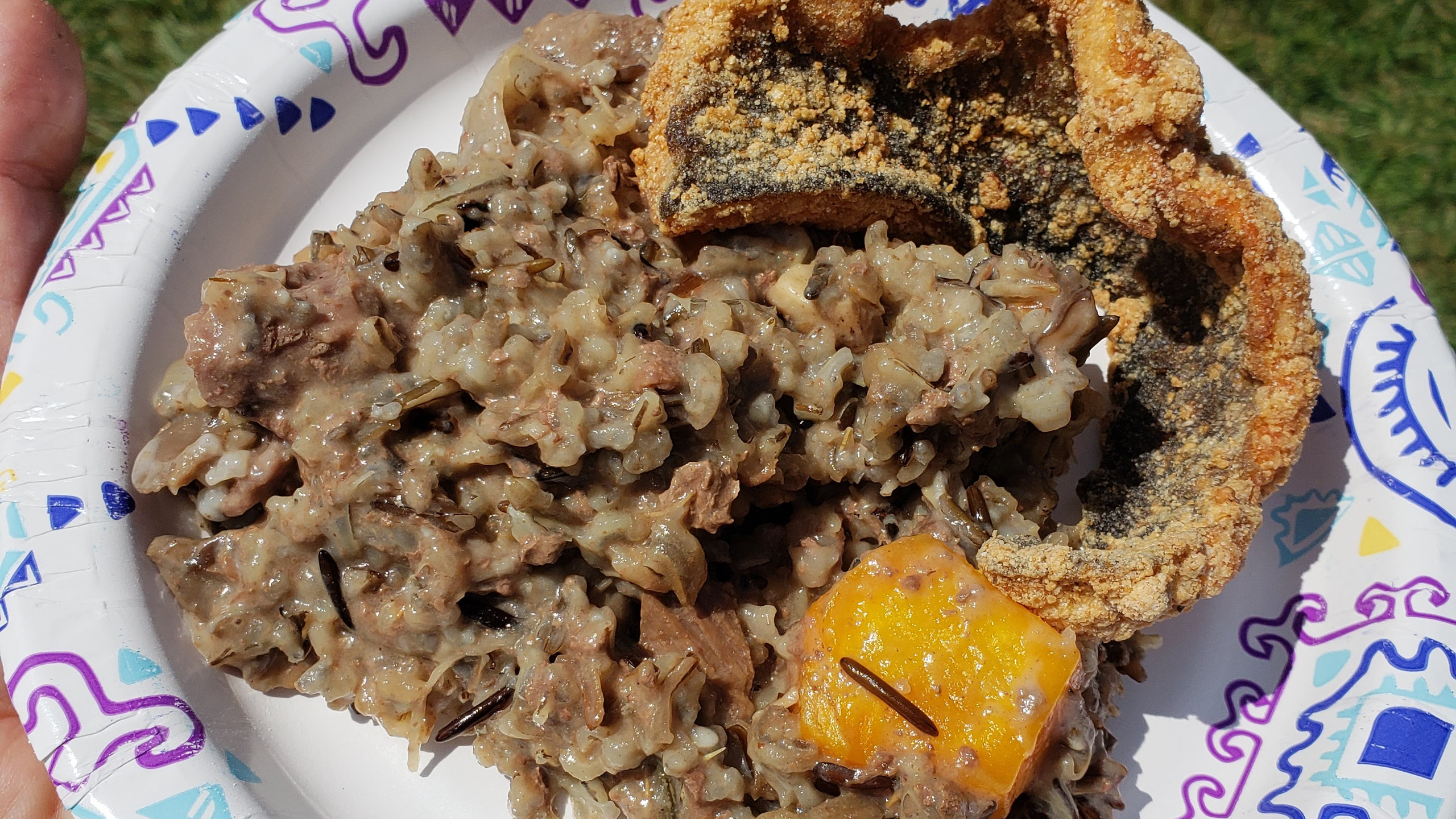 fried fish and wild rice
