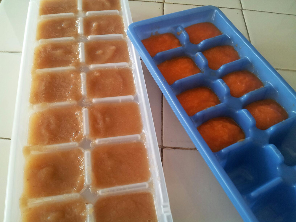 Baby food in ice tray