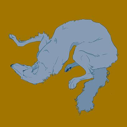 borzoi dog illustration