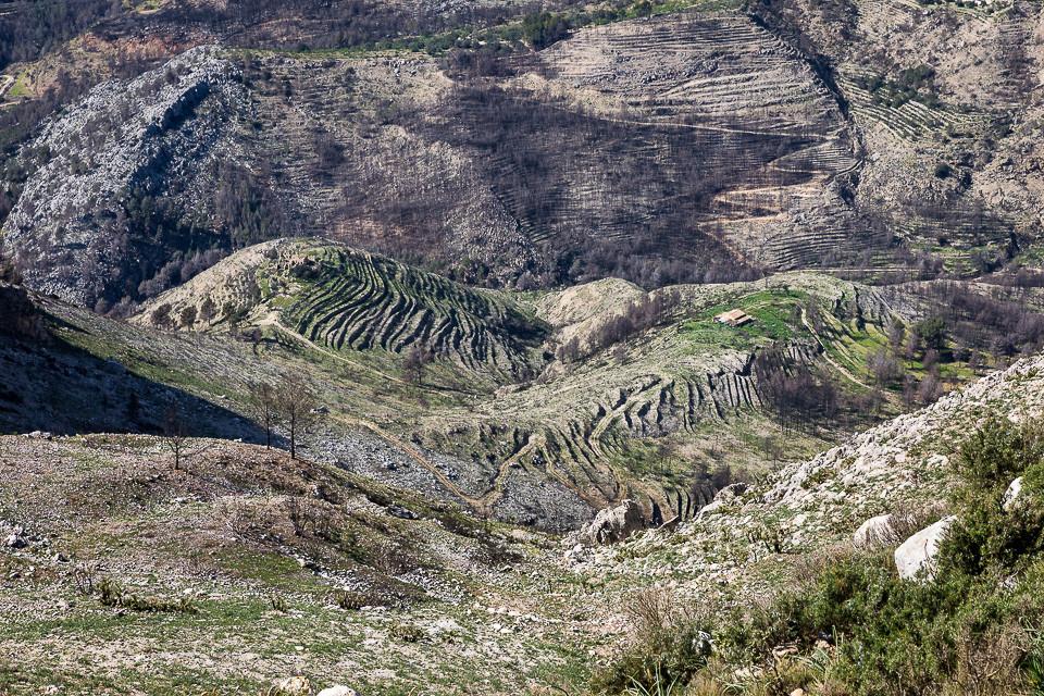 Dal i Sierra Bernia