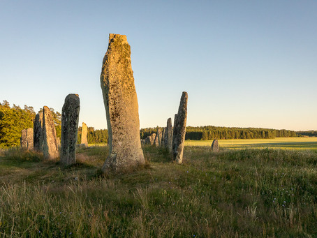 Blomsholm - prehistoric site