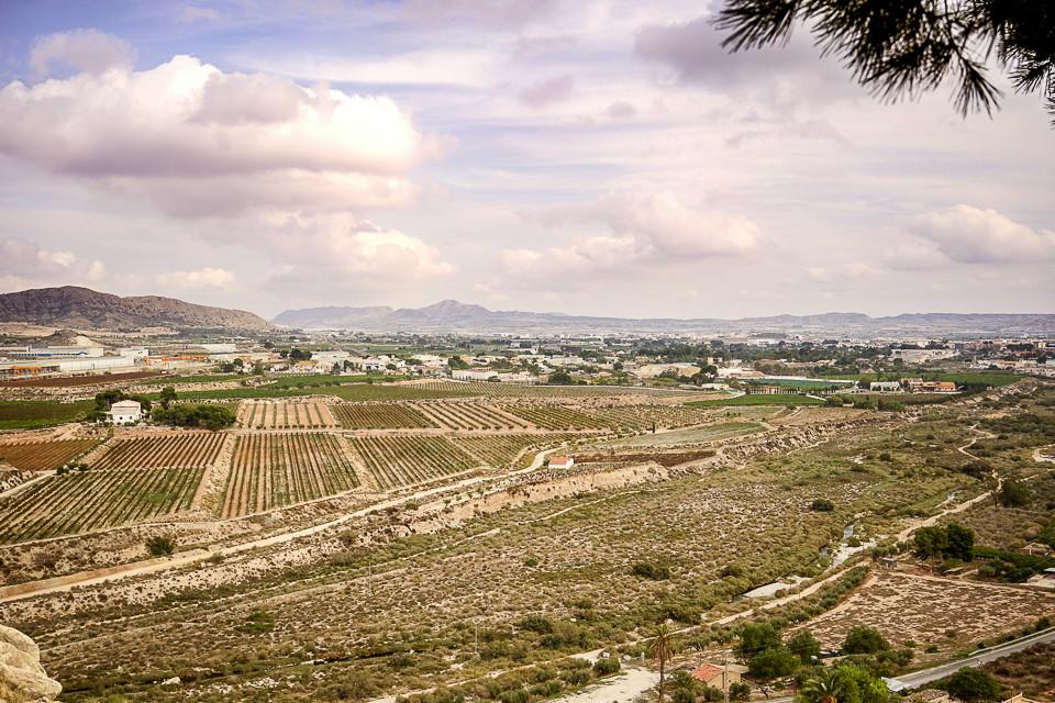 Utsikt mot jordbruksområdene i Novelda