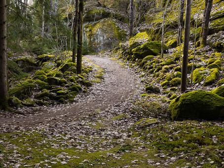 Strømstad - the green forest