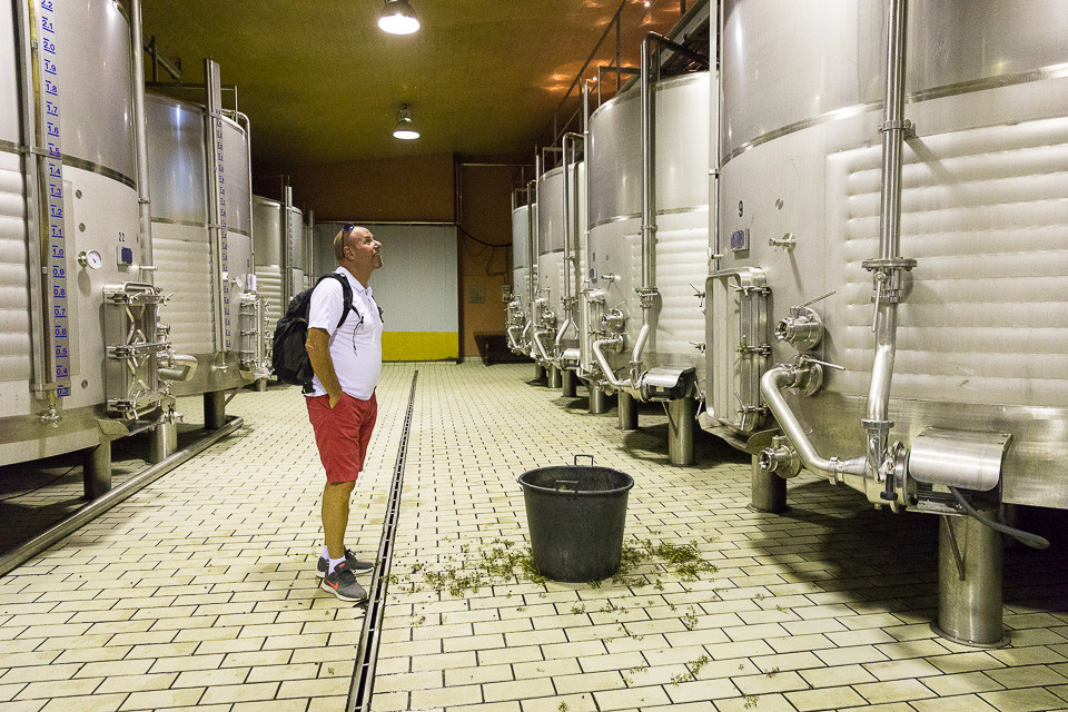 Beholdere med termisk isolasjon for forgjæring av vin