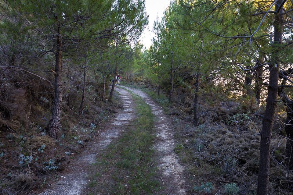 Kjerrevei opp til Sellafjellet
