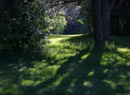 Ekebergparken - todavía provocativo?