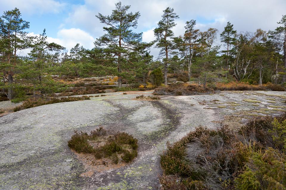 Bart glattslipt berg ved Bjørenrødspiggen