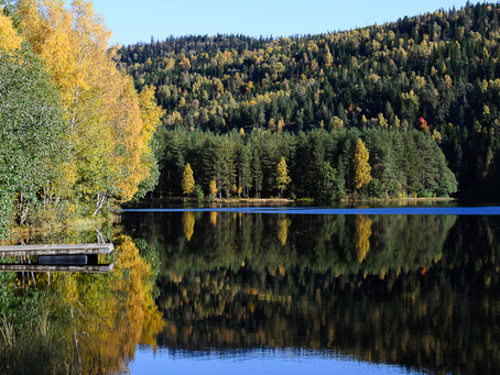 Burudvann - an oasis in the forest