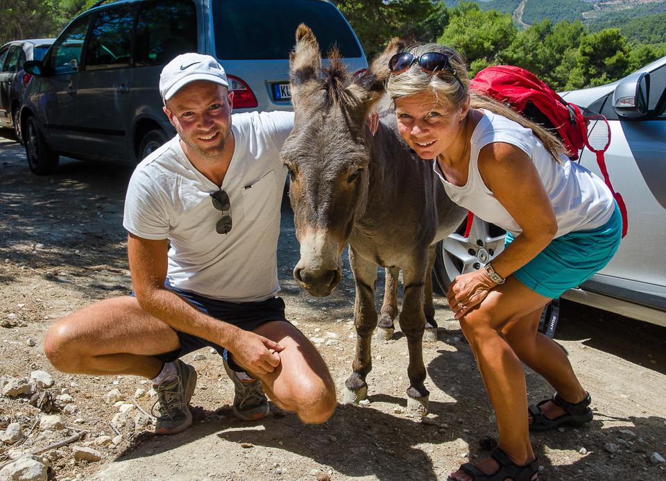 Besøkende poserer for fotografen sammen med et esel i Ainta Safari i Spania