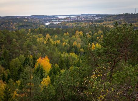 Blomsholm - Lull on the Bohusläden