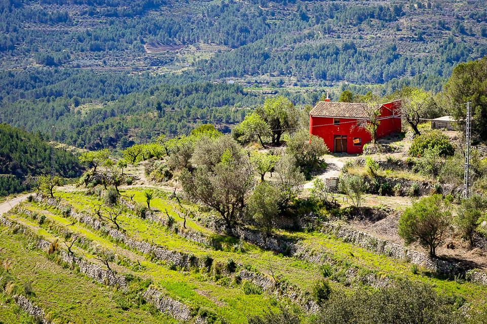Liten gård nær Tarbena