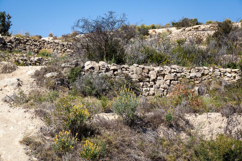Dyrkbare områder laget av steinmurer