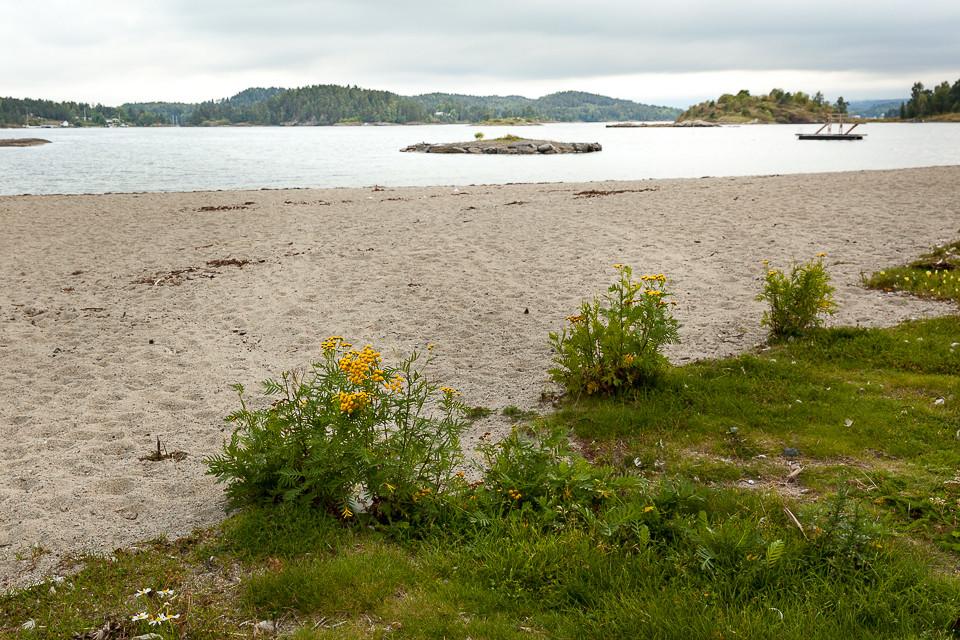 Strand på Storøya ved Fornebu