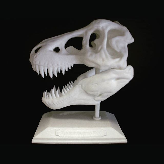 Tyrannosaurus skull printed with PLA filament