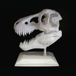 Tyrannosaurus skull printed with PLA filament