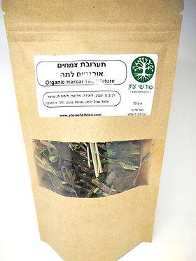 תערובת צמחים אורגניים לתה