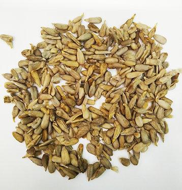 זרעי חמניה מונבטים
