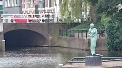 Meermin van Haarlem