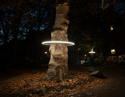 Lichthalo, Parklicht, Amsterdam
