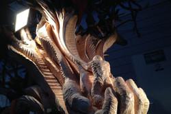 De dierenboom  (Middel)