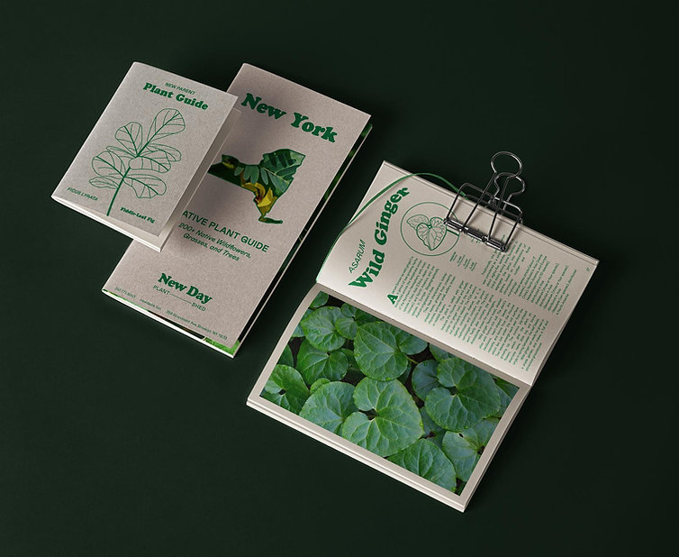 SOC-IG-NewDay-notebooks.jpg