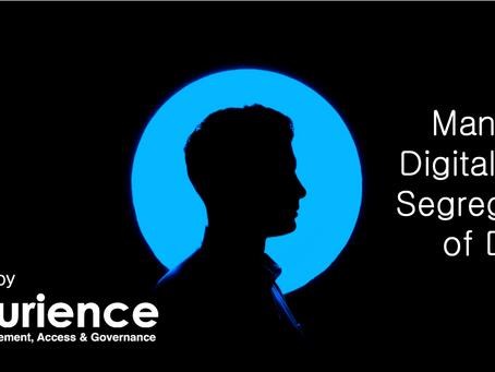 Managing Digital Risk: Segregation of Duties
