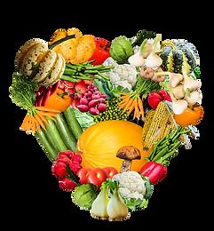 Virginia Nutrition
