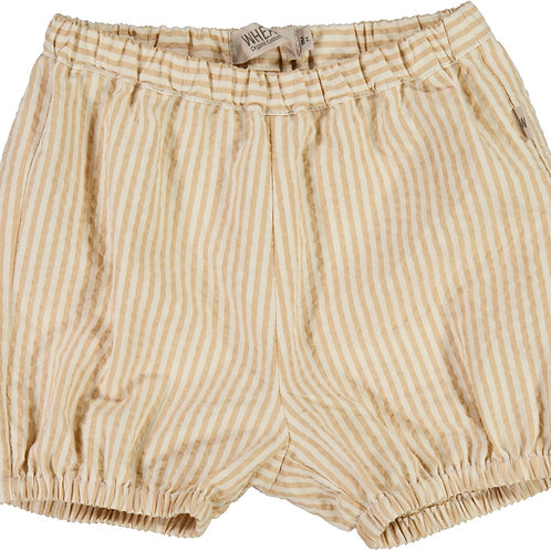 WHEAT Shorts Olly Taffy Stripe