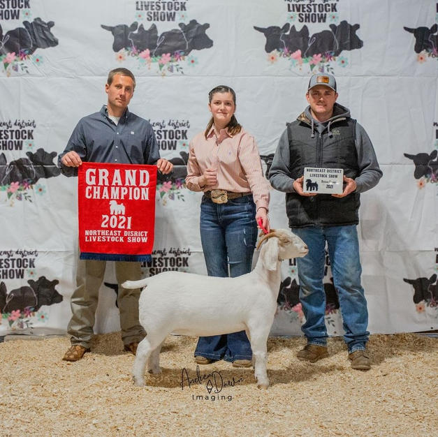Jacey Treadwell of Oologah 4-H