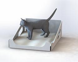 Pet Tuai 02 Cat.JPG