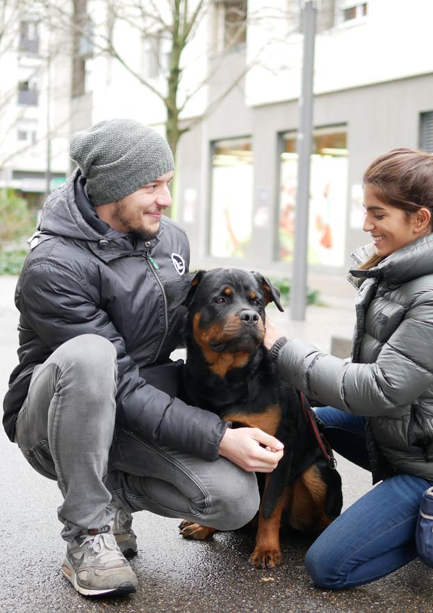 Côté chiens - Education en milieu urbain