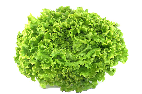 Salades Batavia de région (pcs)