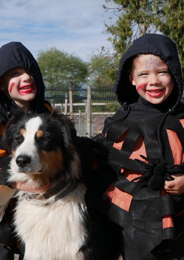 Halloween à la Ferme de Briska