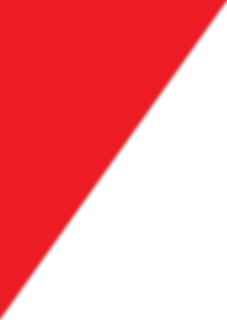 Logo ARPOL TRIANGULO.png