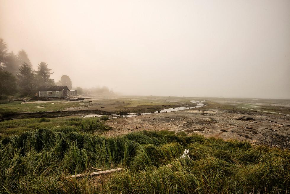 Misty Rough BaySM-Web.jpg