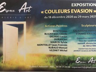 ESPACE ART ALBI 13 Place Pelloutier ALBI 81000 du 18 décembre 2020 au 29 mars 2021