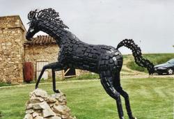 Le Cheval noir à La Boile