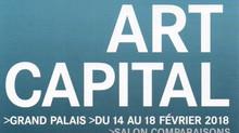 GRAND PALAIS - ART CAPITAL