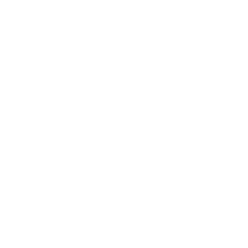 block party transparent background.png