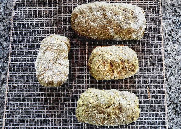 Brote können jetzt getrocknet werden