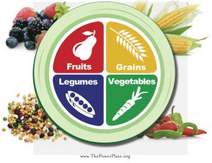 BREAKING: Dietary Guidelines Report Released!