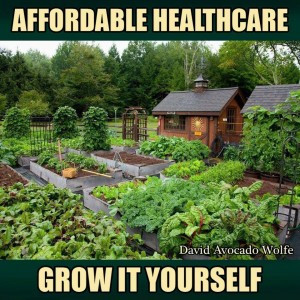 Best for health, body, spirit, environment, sustainability.