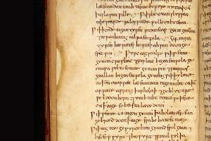 Anglo Saxon remedy kills hospital superbug MRSA