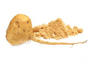 My-Vega-Whole-Food-Ingredients-Maca-Root_313x225
